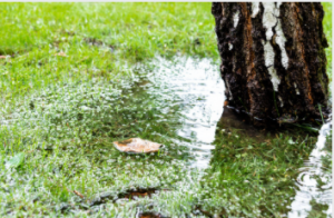 Adelaide Affordable Stormwater